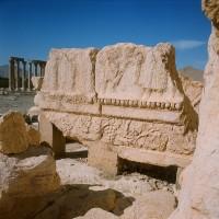 http://donatellabernardi.ch/files/gimgs/th-49_26112014-001061240004_Palmyra_03.jpg