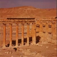 http://donatellabernardi.ch/files/gimgs/th-49_26112014-001061250007_Palmyra_04.jpg